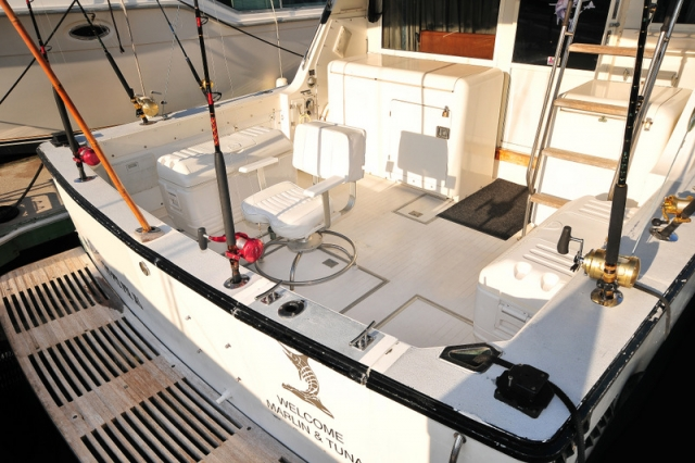 38 ft.Bertram- Fishing Yacht -Up to 10 People - Ample Fishing area fighting chair and coolers